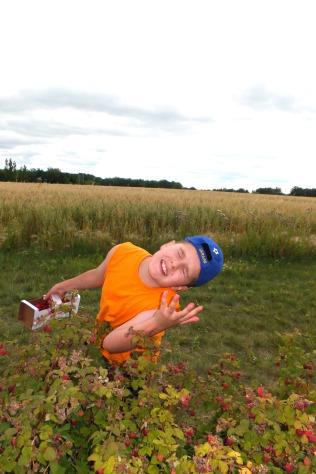 Clayton - berry picking