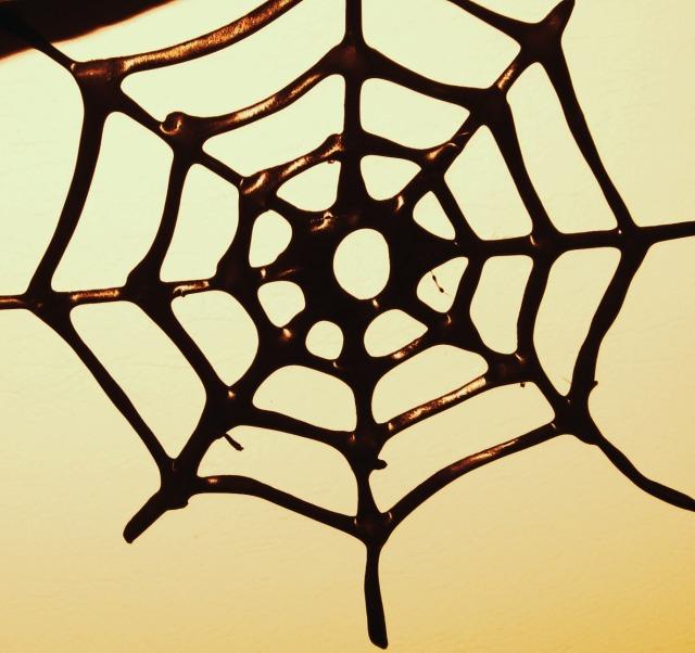edible-spider-web
