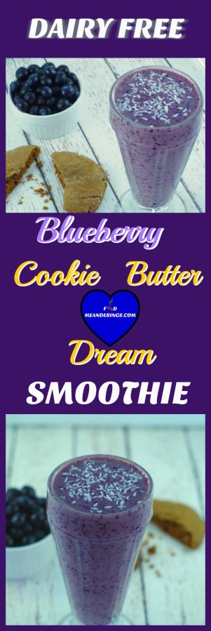 Healthy Dairy Free Cookie Butter Dream Smoothie Recipe.jpg